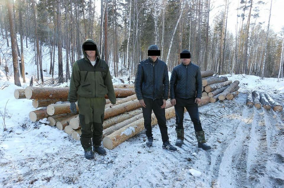Работа вахта осинский лесхоз иркутской обл фото